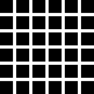 232px_hermann_grid_illusio.jpg