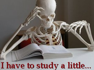 Tostudy.jpg